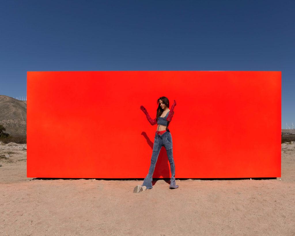 Sterling Ruby-Specter-Desert X-Knorts