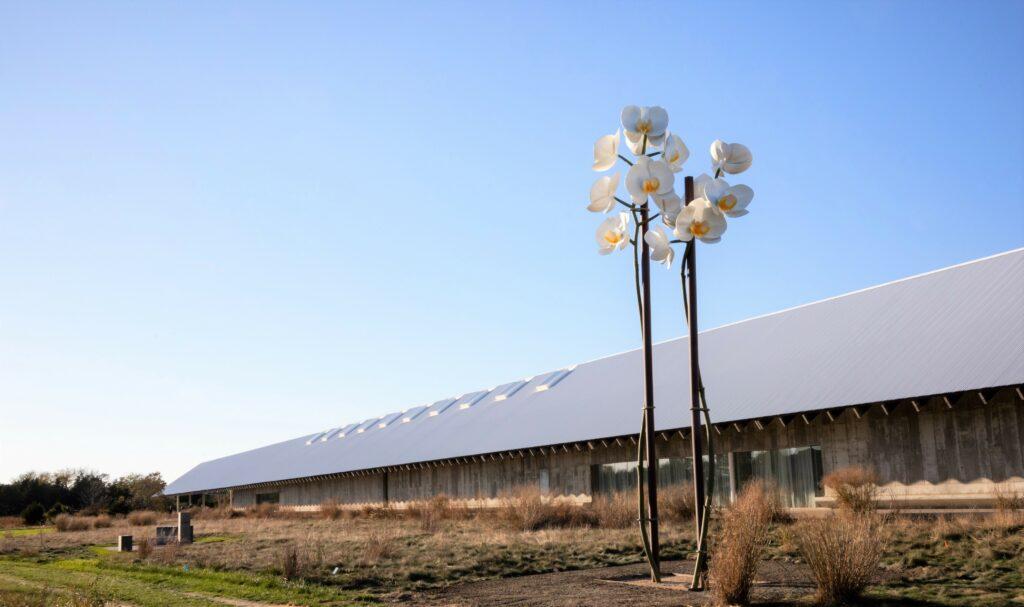 Isa Genzken-Two Orchids-Field of Dreams
